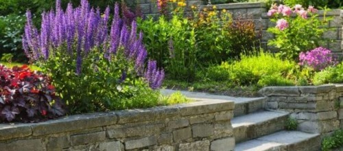Property sellers remember: Your garden is crucial